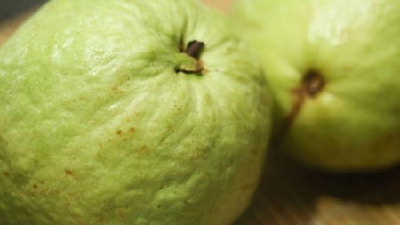 Guava – Benefits and Miracles