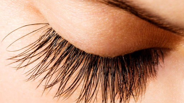 Yes, it is true! There are MITES in your eye lashes!!