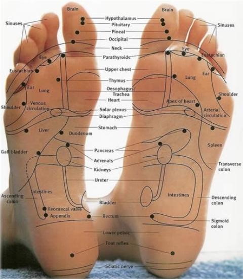 malaysia foot reflexology
