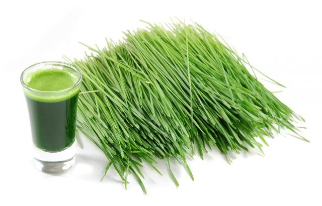 10 Miracles of Wheatgrass