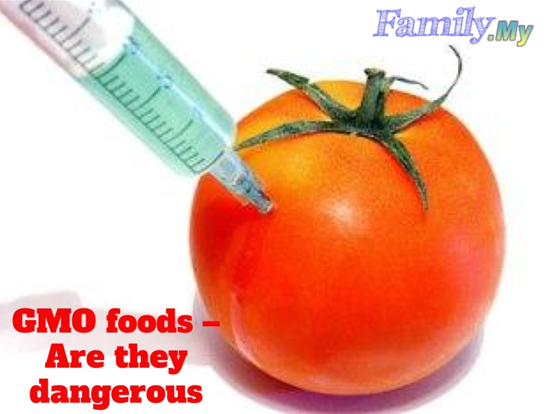 GMO foods – Are they dangerous