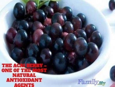 THE ACAI BERRY – ONE OF THE MOST NATURAL ANTIOXIDANT AGENTS