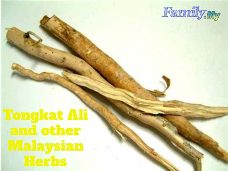Tongkat Ali and other Malaysian Herbs