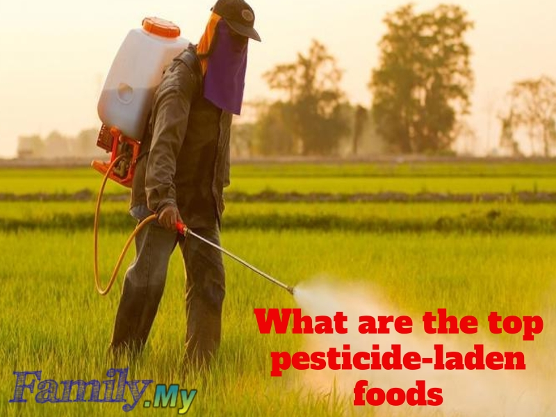 What are the top pesticide-laden foods
