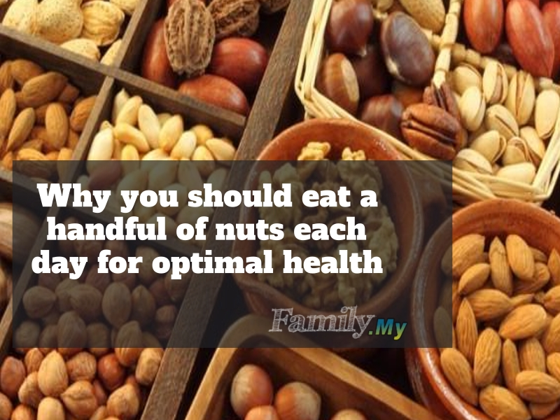 Why you should eat a handful of nuts each day for optimal health