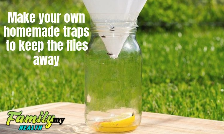 homemade_traps_flies
